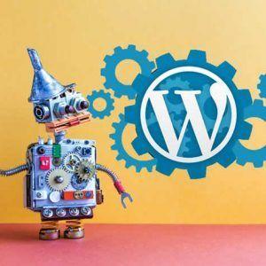 Manutenzione base wordpress con pagamento annuale